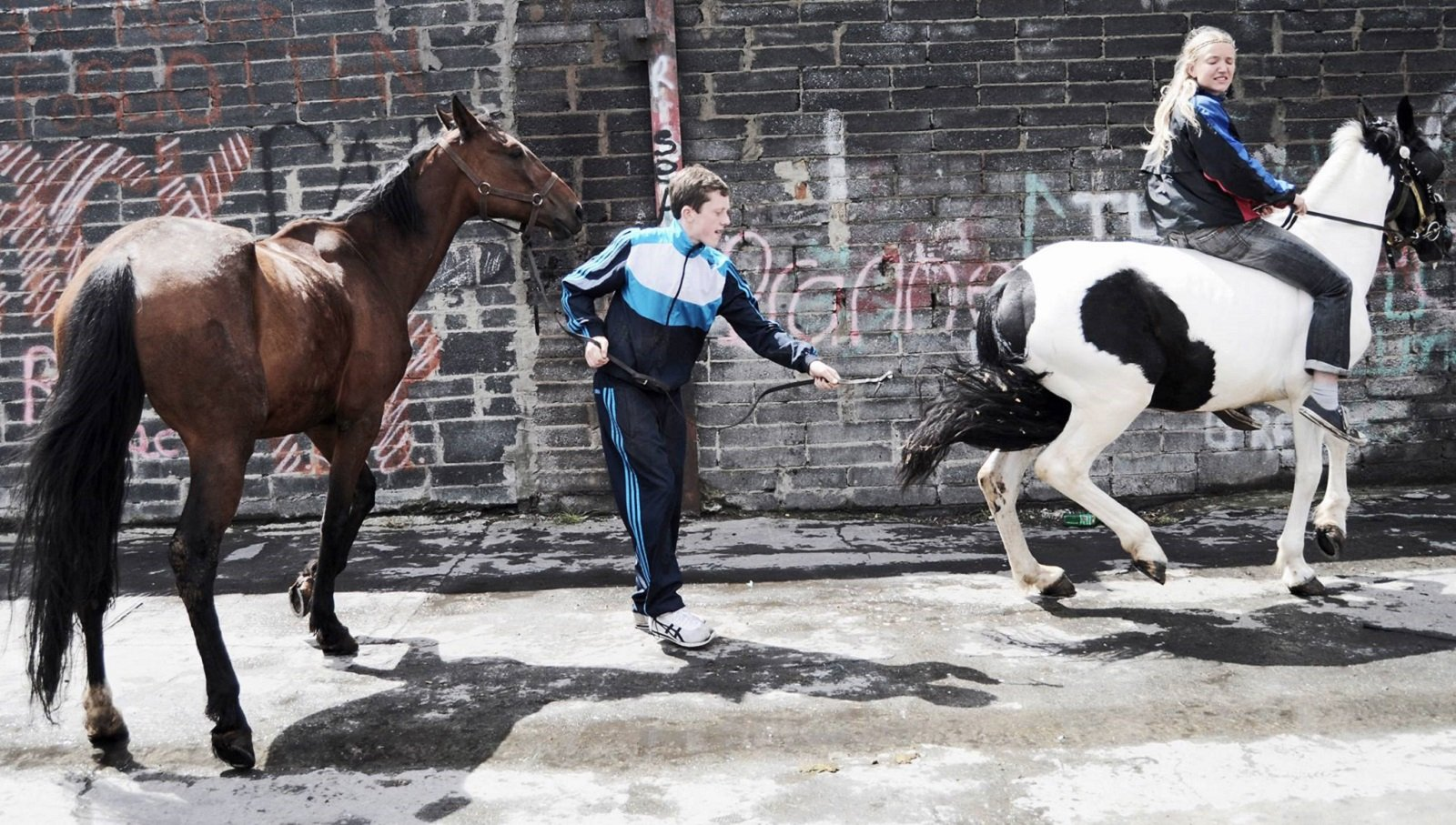 Why Dublin's urban horse culture needs to be protected