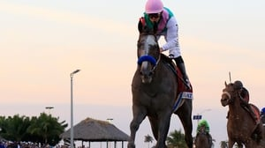 Arrogate is unbeaten since finishing third on his debut over an inadequate six furlongs