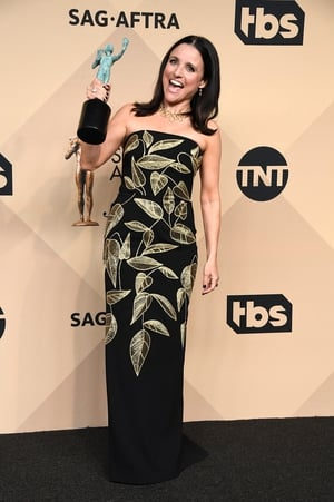 Julia Louis-Dreyfus in a Lela Rose dress, Salvatore Ferragamo shoes, and again, Fred Leighton jewelry with her award for Female Actor in a Comedy Series for 'Veep'.