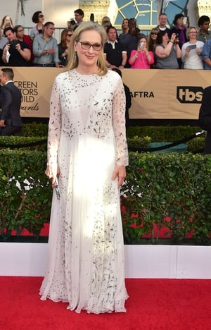 Mmmm: Meryl Streep wore Valentino and looked serene - dress was a little loose though and hid her frame.