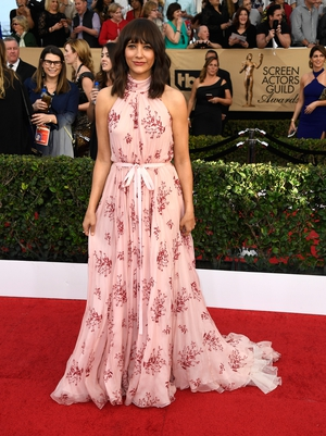 Miss: Parks and Recreation's Rashida Jones is a little under dressed for the SAGs in this pretty prairie dress.