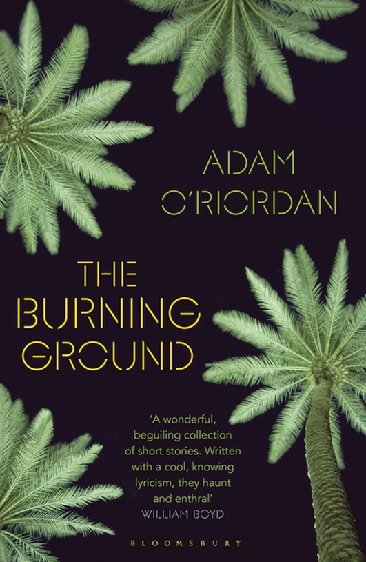 """The Burning Ground"" by Adam O'Riordan"