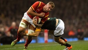 Ross Moriarty in action for Wales against South Africa during last November's international
