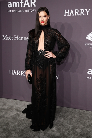 Another supermodel, another amazing dress. Adriana Lima rocks a vampy look in Zuhair Murad.