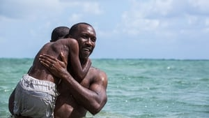 Moonlight wins top honour at Writers Guild Awards