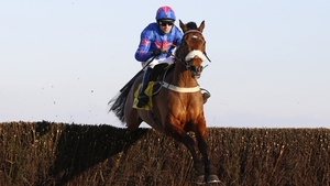Cue Card drew further and further clear to win by 15 lengths