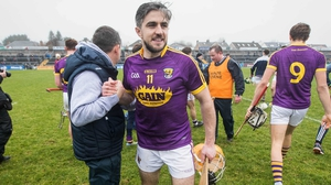 Wexford Manager Davy Fitzgerald celebrates with David Redmond after the game