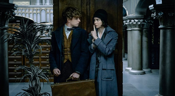Warnerbros.co.uk Fantastic Beasts and Where to Find Them