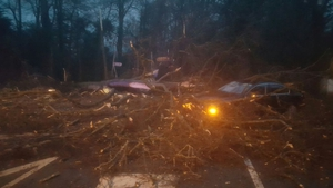 Car buried under fallen branches in Malahide, Dublin (Pic: Dublin Fire Brigade)