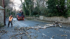 Storm Doris clean up in Shankill, Co Dublin (Pic: John Coveney Photography)