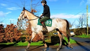Carter McKay is Willie Mullins' main hope for the Champion Bumper