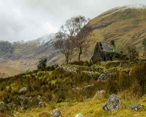 Finalist: James Graham, Drumluska House, Black Valley, Killarney, Co. Kerry.