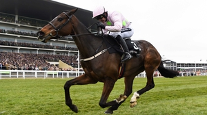Douvan could go in the Queen Mother Champion Chase or the Ryanair Chase