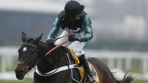 Altior can look forward to the Champion Chase