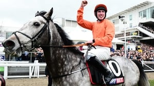 Labaik won the Supreme Novices' Hurdle at Cheltenham in March