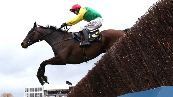 Sizing John swept all before him in this year's Gold Cups