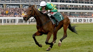 Minella Rocco makes a seasonal bow at Punchestown on Thursday
