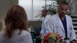 Grey's Anatomy Preview: Jackson Accuses April of Job Stealing