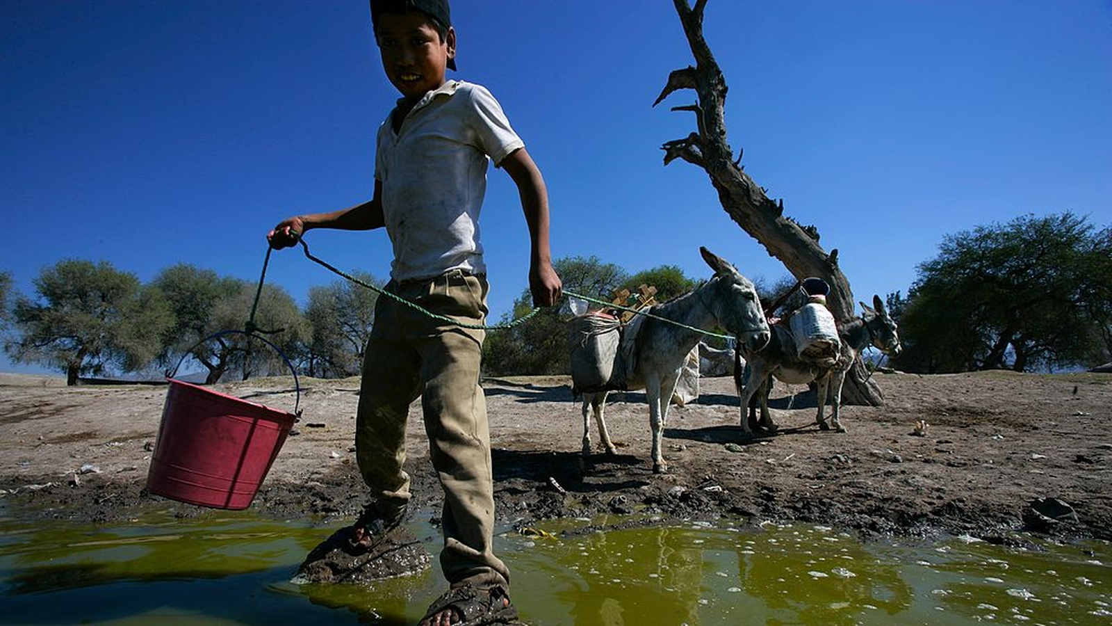 2 billion people drinking contaminated water - WHO