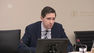 Simon Harris stressed his desire for a slimmed-down HSE body