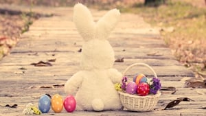 Want to keep your little one away from chocolate? Why not pick them up an Easter teddy? Marks and Spencers, Tesco and LittleWoods all have cuddly toys that the kids will love.