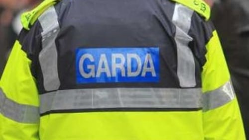 Gardaí attended the scene of the collision (file image)