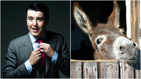 Al Porter will brave tastes unknown by eating donkey cheese live on air.