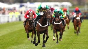 Buveur D'Air won the Aintree Hurdle in 2017 and finished second in the race in 2019