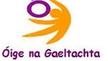 Debra Ni Shúilleabháin, Ball ainmithe ar Údarás na Gaeltachta.