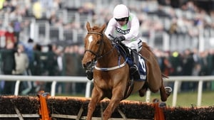 Annie Power became the first mare in 22 years to claim the Champion Hurdle at Cheltenham in March 2016