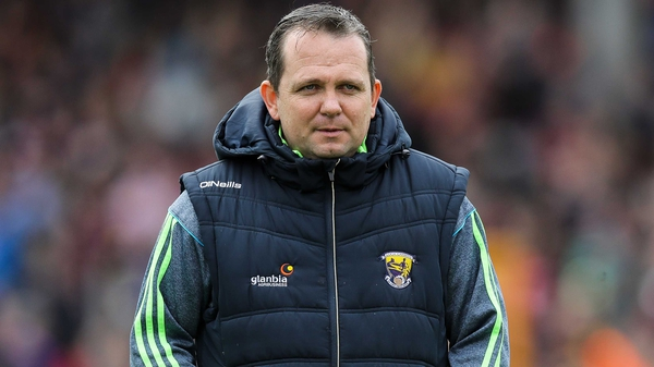 Wexford manager Davy Fitzgerald has been handed an eight-week touchline ban