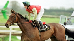 The Irish Grand National - Chasing A Dream