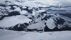Sea ice is seen from NASA's Operation IceBridge research aircraft off the northwest coast on 30 March above Greenland