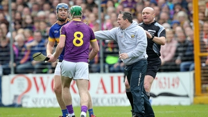 Davy Fitzgerald has his say on the pitch during Wexford's defeat to Tipperary