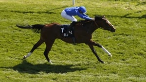 Barney Roy is now the 6-1 third favourite for the 2000 Guineas
