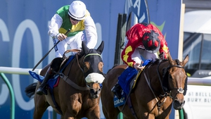 Vicente (hood) reels in Cogry at Ayr