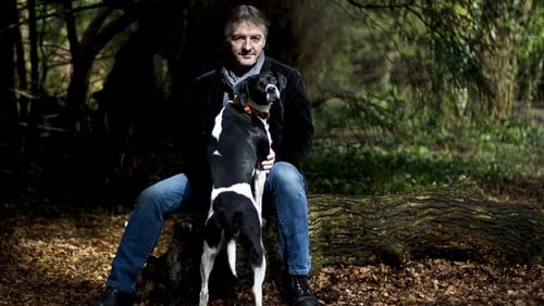 John Connolly's woods are dark and deep - with many chapters to go before you sleep