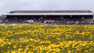 The Punchestown festival continues today