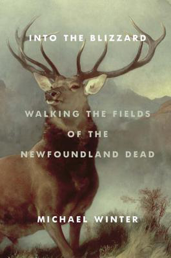 """Into The Blizzard: Walking The Fields of the Newfoundland Dead"" by Michael Winter"
