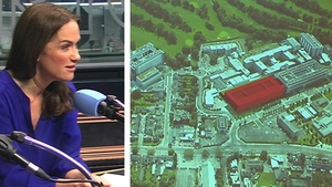 Dr Rhona Mahony said the ownership of the hospital is a technical detail