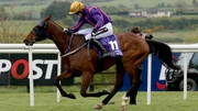 Wicklow Brave on his way to winning the Betdaq Punchestown Champion Hurdle
