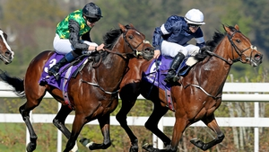Rekindling leads the field home in last month's Ballysax Stakes