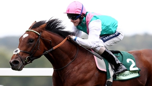 Research shows genetic factor plays a part in horse speed