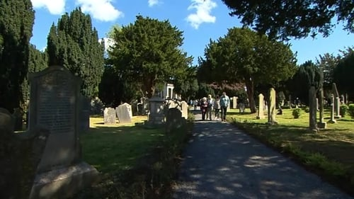 For nearly 150 years Goldenbridge Cemetery has operated as a closed cemetery, locked and visited by appointment only
