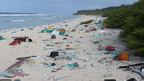 Henderson Island is littered with an estimated 37.7 million pieces of plastic