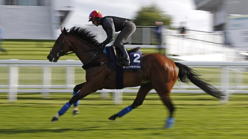 Cracksman is a warm order to deliver the day two feature