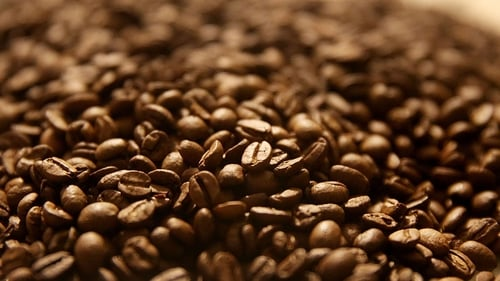 At least 60% of coffee species are threatened with extinction