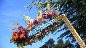 Follow live updates from day one at Bloom 2017 from Dublin's Phoenix Park, all day long.