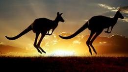 Natural World: Kangaroo Dundee and Other Animals