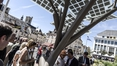 French town turns over new leaf with solar tree